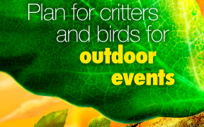 Event Tip: Critters